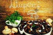 ciuperci fripte 1 1 1